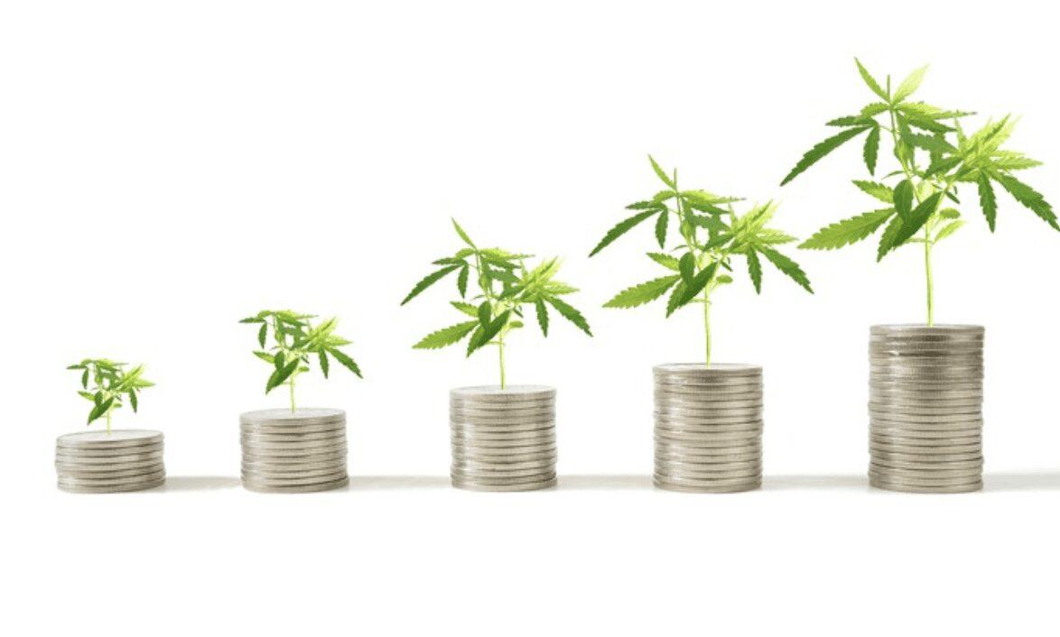 invierte en indice de canabis acciones mariguana invertir en marihuana acciones marihuana medicinal invertir en acciones de cannabis medicinal