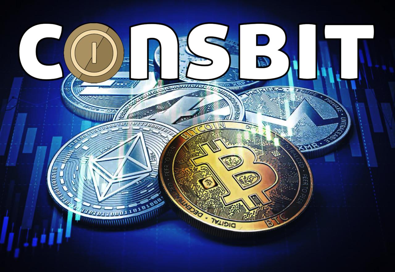 ¿Qué es Coinsbit?